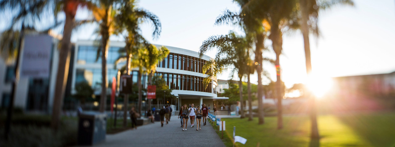 Students walking on sidewalk with palm trees